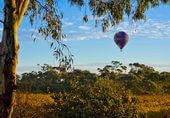 South Australian Hot-Air-Balloon ride